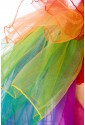 Color fullcolor rainbow tulle skirt
