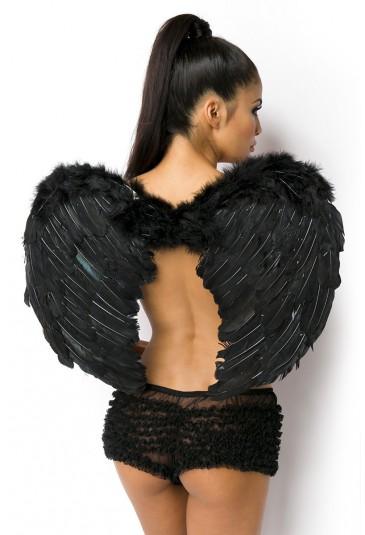 Čierne anjelské krídla padlý anjel