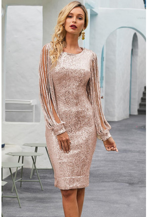 Nude Sequin Tassel Sleeve Bodycon Evening Dress