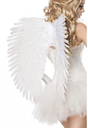 Big white angel wings