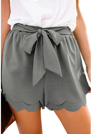 Summer elegant grey shorts