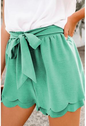 Summer elegant mint shorts