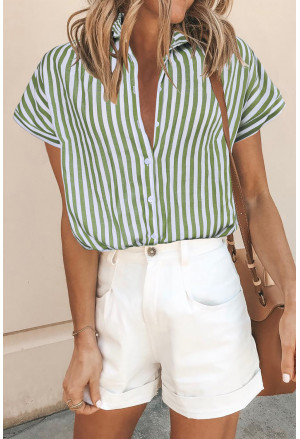 Short Sleeve Buttoned Striped Print Blouse