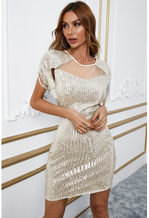 Sequin Mesh Patch Bodycon Mini Dress with Tassel